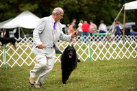 Dogshow 2016-08-13 Oak Creek--101506-2