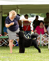 20150809 Greater Racine Kennel Club