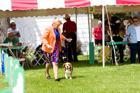 Dogshow 2017-07-31 Burlington WI KC--111034-2