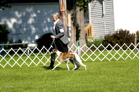 Dogshow 2017-07-31 Burlington WI KC--092223-3