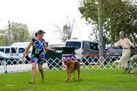 Dogshow 2017-08-01 Burlington WI KC D2--135940-2