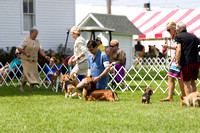 Dogshow 2017-08-01 Burlington WI KC D2--140037