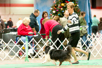 Dogshow 2017-12-09 Skokie Valley KC--153313-5