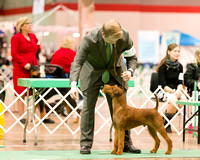 Dogshow 2017-12-09 Skokie Valley KC--173345