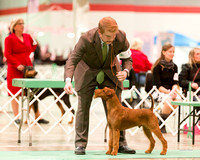 Dogshow 2017-12-09 Skokie Valley KC--173346