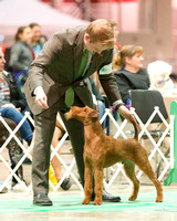 Dogshow 2017-12-09 Skokie Valley KC--173156