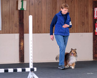 Dogshow 2018-04-07 Interlocking SSC--092942