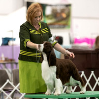 Dogshow 2018-06-13 Starved Rock KC Wed--170141