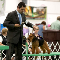 Dogshow 2018-06-13 Starved Rock KC Wed--172458