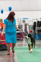 Dogshow 2018-06-13 Starved Rock KC Wed--103740-2