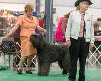 Dogshow 2018-06-13 Starved Rock KC Wed--150924