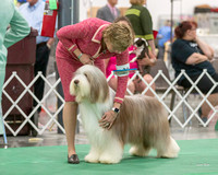 Dogshow 2018-06-13 Starved Rock KC Wed--151421