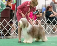 Dogshow 2018-06-13 Starved Rock KC Wed--151422