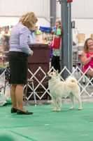 Dogshow 2018-06-13 Starved Rock KC Wed--151753