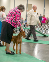 Dogshow 2018-06-13 Starved Rock KC Wed--102537