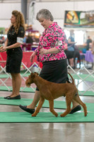 Dogshow 2018-06-13 Starved Rock KC Wed--105127-2