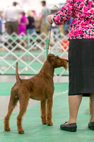 Dogshow 2018-06-13 Starved Rock KC Wed--105214