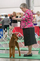 Dogshow 2018-06-13 Starved Rock KC Wed--105348