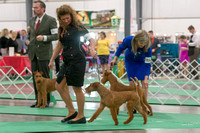 Dogshow 2018-06-13 Starved Rock KC Wed--105958