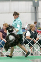 Dogshow 2018-06-13 Starved Rock KC Wed--155329