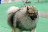 Dogshow 2018-06-13 Starved Rock KC Wed--155422