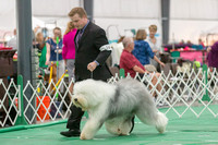 Dogshow 2018-06-13 Starved Rock KC Wed--093905-4