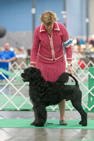 Dogshow 2018-06-13 Starved Rock KC Wed--123633