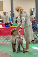 Dogshow 2018-06-13 Starved Rock KC Wed--124237