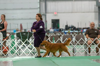 Dogshow 2018-06-13 Starved Rock KC Wed--164925-2