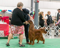 Dogshow 2018-06-13 Starved Rock KC Wed--164955