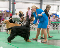 Dogshow 2018-06-13 Starved Rock KC Wed--165257