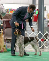 Dogshow 2018-06-13 Starved Rock KC Wed--165407