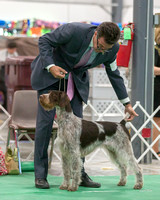 Dogshow 2018-06-13 Starved Rock KC Wed--165413