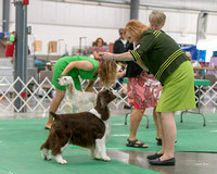 Dogshow 2018-06-13 Starved Rock KC Wed--170230