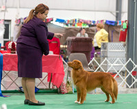 Dogshow 2018-06-13 Starved Rock KC Wed--170355