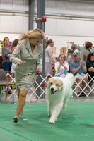 Dogshow 2018-06-13 Starved Rock KC Wed--152922-2