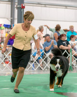 Dogshow 2018-06-13 Starved Rock KC Wed--152931