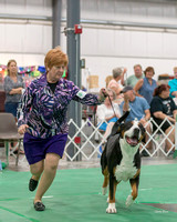 Dogshow 2018-06-13 Starved Rock KC Wed--153035-2