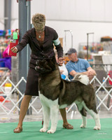 Dogshow 2018-06-13 Starved Rock KC Wed--153346