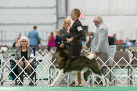 Dogshow 2018-06-13 Starved Rock KC Wed--152756-2