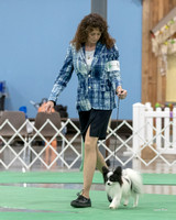 Dogshow 2018-06-15 untitled shoot--163815-2