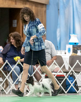 Dogshow 2018-06-15 untitled shoot--164319-2