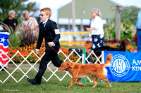 AKC selects from September