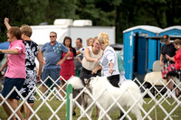Dogshow 2016-08-13 Oak Creek--131509