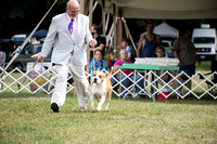Dogshow 2016-08-13 Oak Creek--150112-4