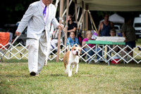 Dogshow 2016-08-13 Oak Creek--150113-2