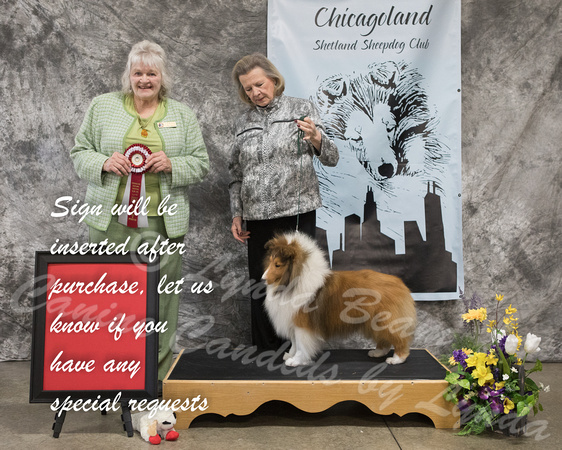 Dogshow 2018-03-04 CSSC Day 2--141714
