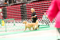 Dogshow 2017-07-08 Greater DeKalb KC--152323-2