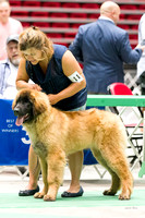 Dogshow 2017-07-08 Greater DeKalb KC--133843