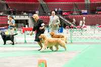 Dogshow 2017-07-08 Greater DeKalb KC--152541
